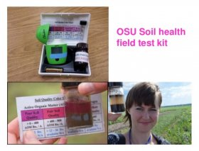 soil test color